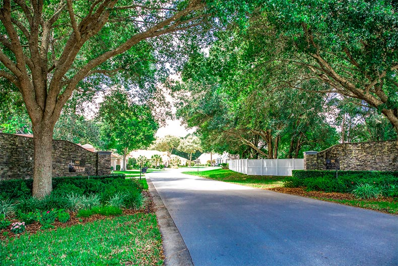 A residential street lined with trees in Oak Run in Ocala, Florida