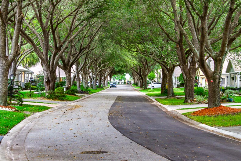 View down a tree-lined residential street at On Top of the World in Ocala, Florida