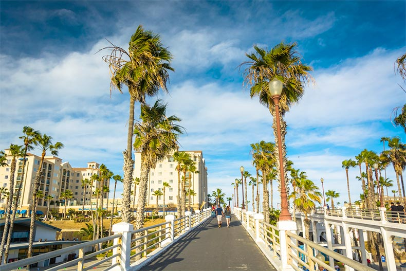 Palm trees along the pier in Oceanside, California