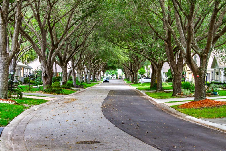 A tree-lined residential street in On Top of the World in Ocala, Florida