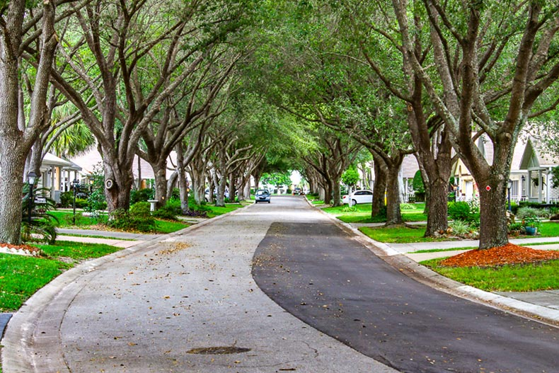 View down a street lined with trees and houses at On Top of the World in Ocala, Florida