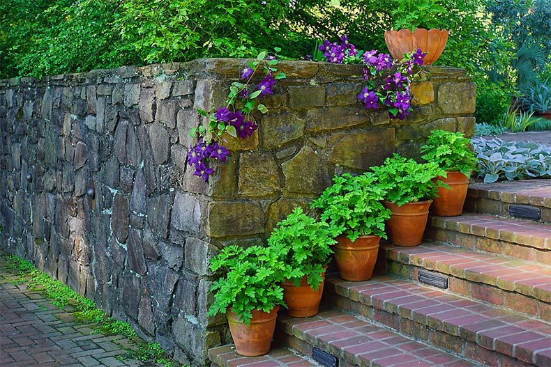 Potted plants on stone steps beside a stone wall in the Longwood Gardens in Kennett Square, Pennsylvania