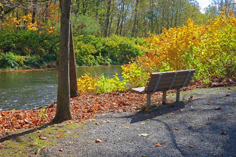 A bench surrounded by autumn foliage beside Brodhead Creek in Eastern Pennsylvania