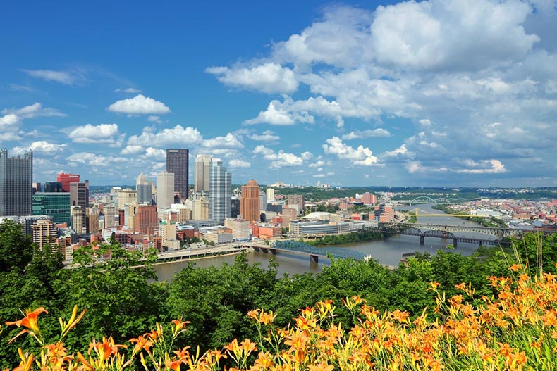 A view of Pittsburgh, Pennsylvania from across the Allegheny and Monongahela Rivers with yellow flowers in the foreground