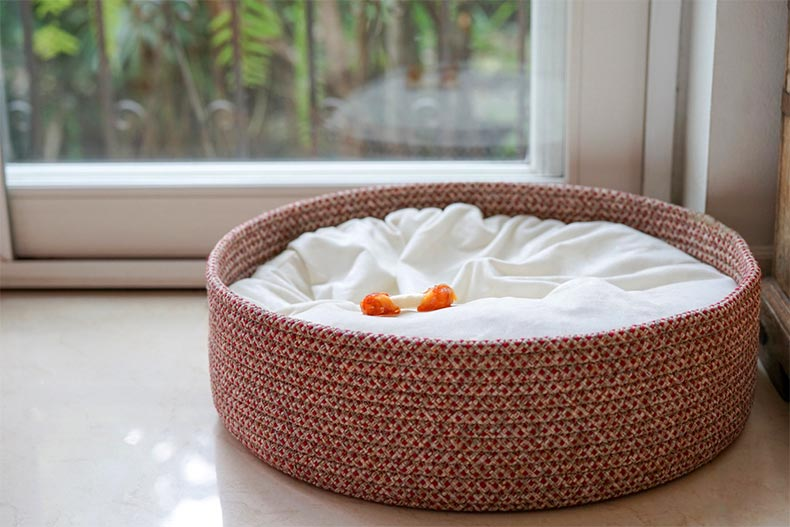 An empty dog bed basket with a dog bone snack left on the bed