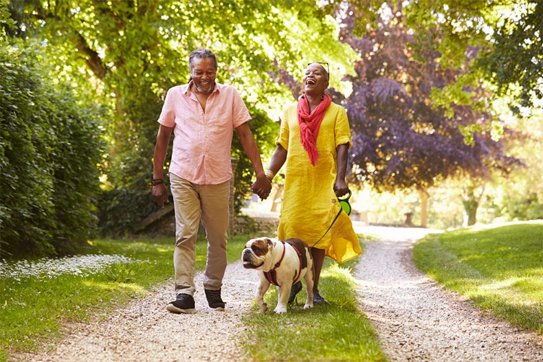 An older couple smiling and laughing while going for a walk with their bulldog on a sunny day