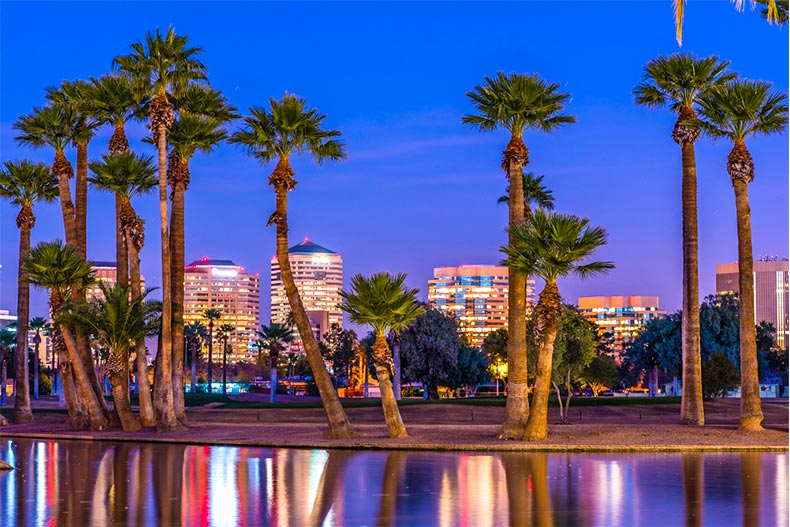 Water and palm trees with Phoenix, AZ skyline at night