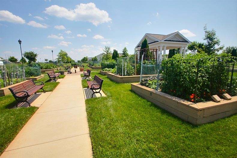 Community Spotlight: Potomac Green in Ashburn, VA