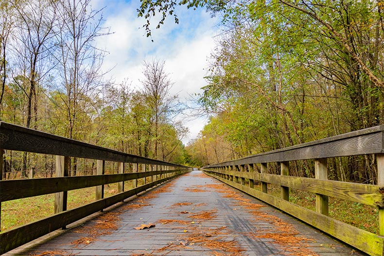 A wooden bridge over a creek surrounded by trees on the Neuse River Greenway in Raleigh, North Carolina