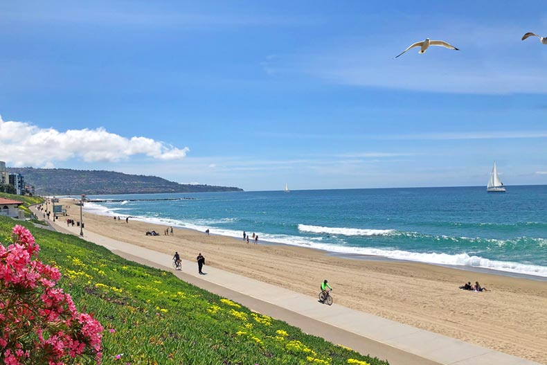 People jogging and cycling on a sunny day at Redondo Beach in California
