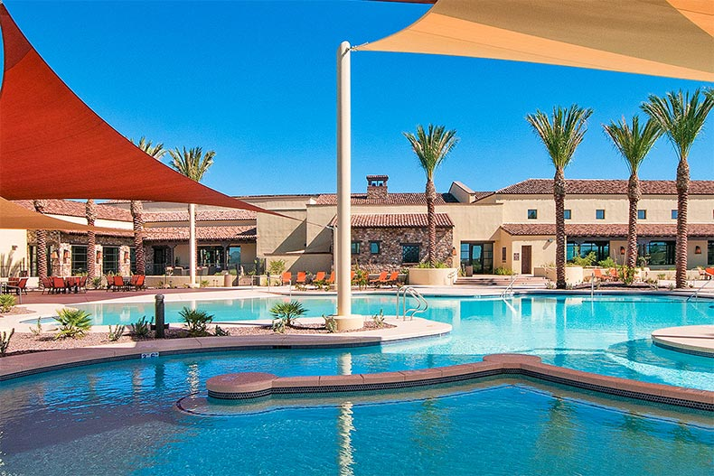 Palm trees around the outdoor pool at SaddleBrooke Ranch in Oracle, Arizona