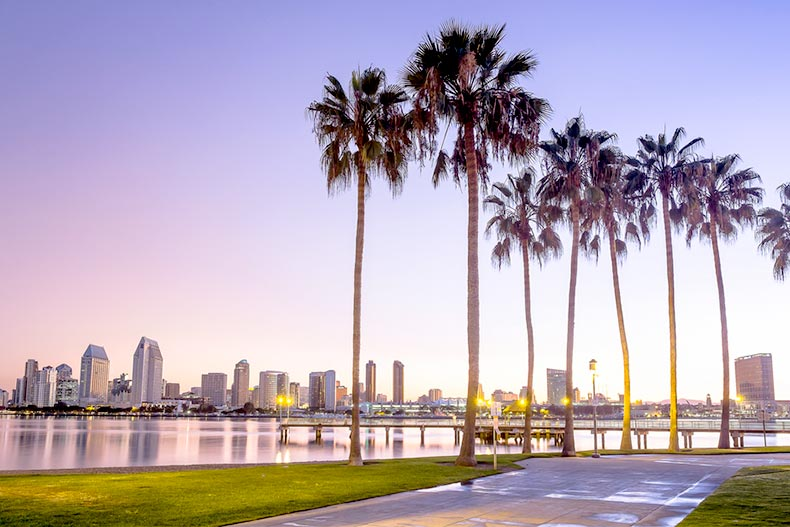 Palm trees along a path across the water from the San Diego skyline
