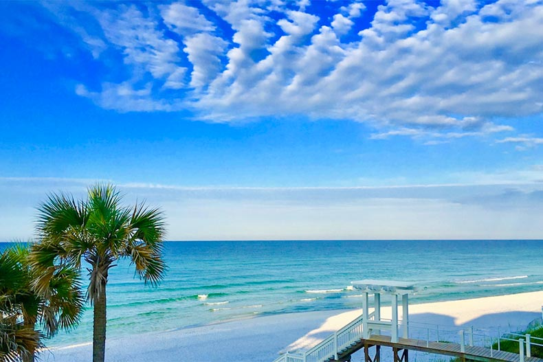Blue skies over Santa Rosa beach with palm trees and white sand in Florida
