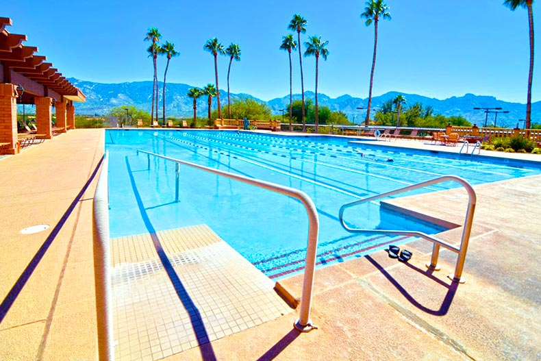 outdoor pool with palm trees at Sun City Oro Valley