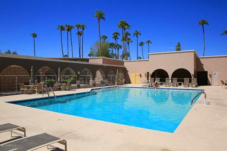 Palm trees surrounding the outdoor pool and patio at Scottsdale Shadows in Scottsdale, Arizona