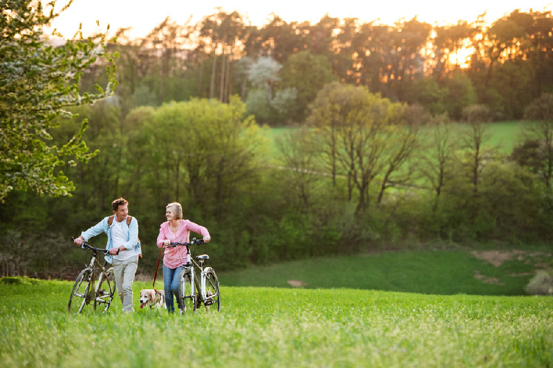 older couple walking in sunny field with bicycles and dog