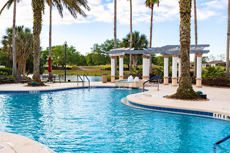 Palm trees surrounding the outdoor pool at Solivita in Kissimmee, Florida