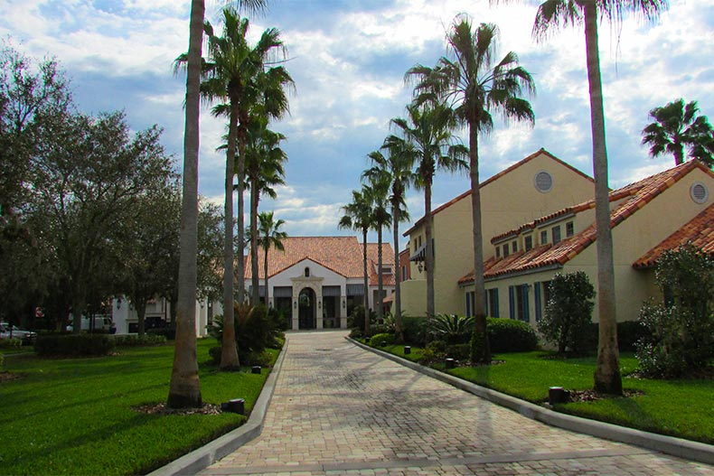 View of a brick pathway lined with palm trees leading to an amenity complex at Solivita in Kissimmee, Florida