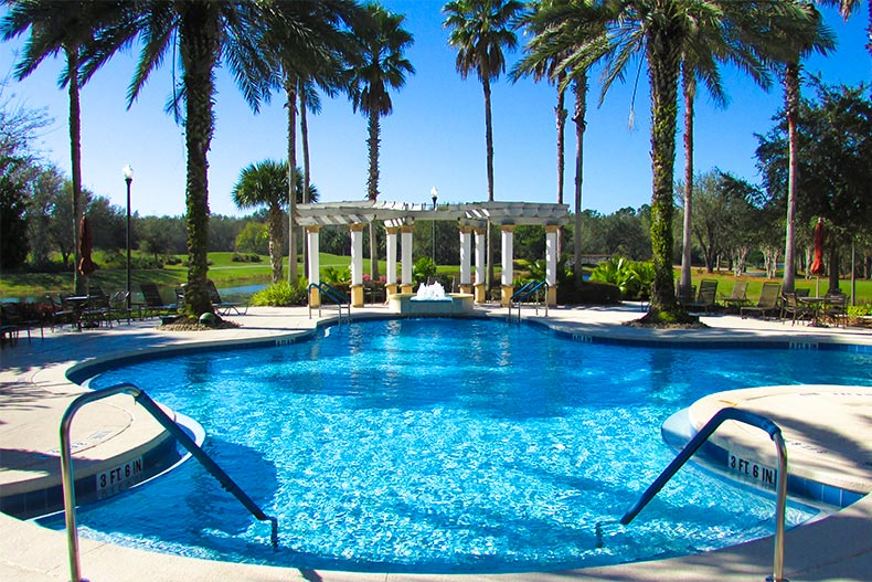 Pool with palm trees at Solivita in Kissimmee Florida