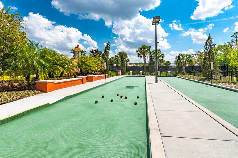 Palm trees surrounding the bocce ball courts at Solivita in Kissimmee, Florida
