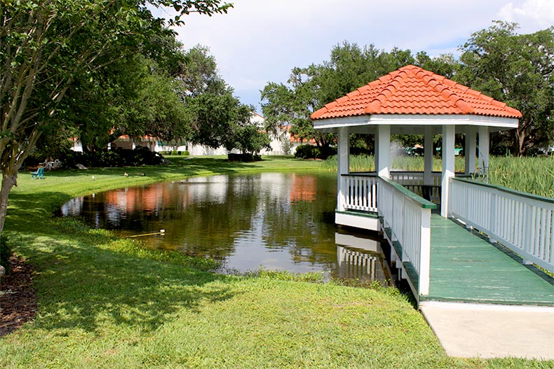 View of a gazebo overlooking a pond surrounded by trees at Spruce Creek South in Summerfield, Florida