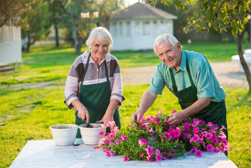 senior couple outdoors gardening together in retirement