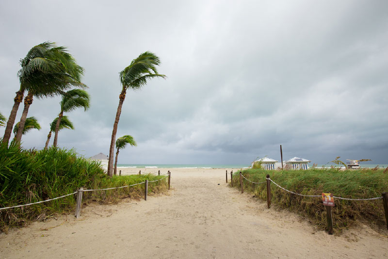 sandy pathway to florida beach with wind blowing and dark clouds