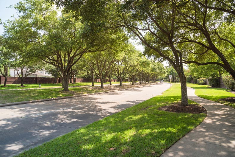 View down a tree-lined street in a suburban residential area in Katy, Texas