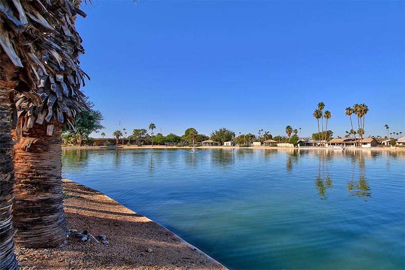 Palm trees surrounding a picturesque lake at Sun City in Arizona