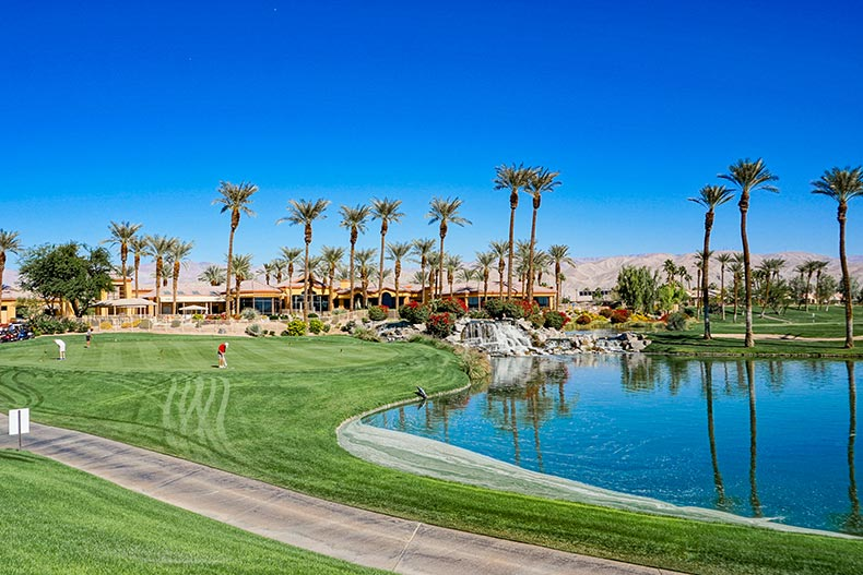Palm trees surrounding the clubhouse, golf course, and picturesque pond at Sun City Palm Desert in Palm Desert, California