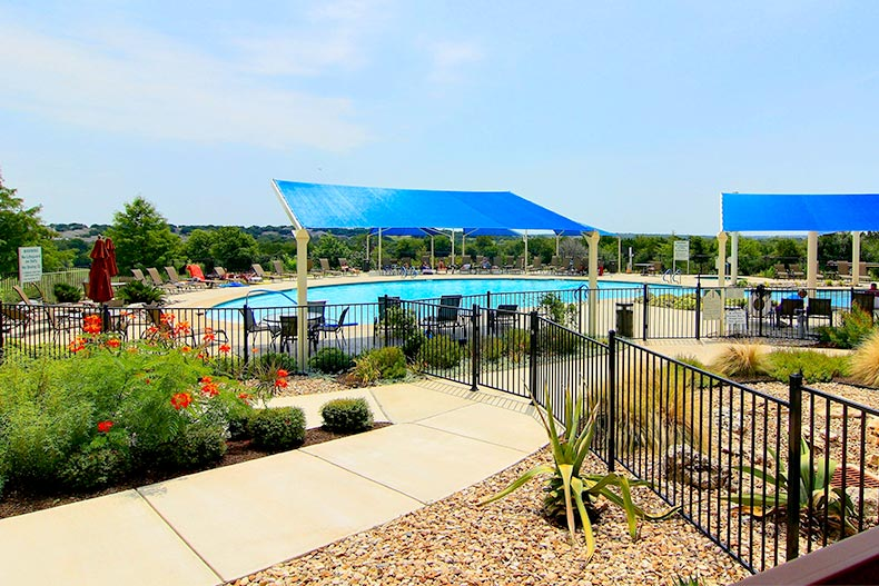 Outdoor pool and desert landscaping in bloom at Sun City Texas in Georgetown, Texas