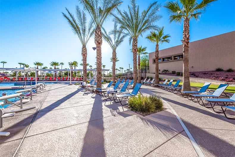 Palm trees and lounge chairs on the outdoor patio beside the pool at Sun City West in Arizona