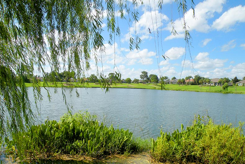 View of homes across Lake Vista at Sun Lakes Country Club in Banning, California