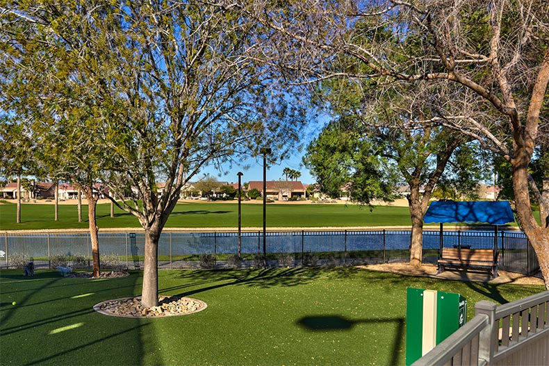 Pet park and outdoor space in Sun City Grand, Surprise, Arizona