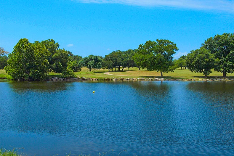 Pond and trees in greenspace in Sun City Texas