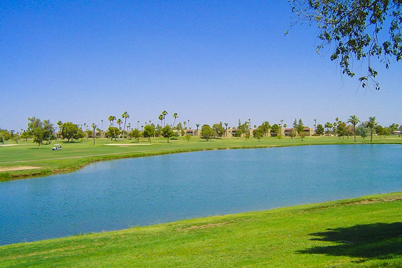 Pond with fairways and golf cart beyond it in Sun City West