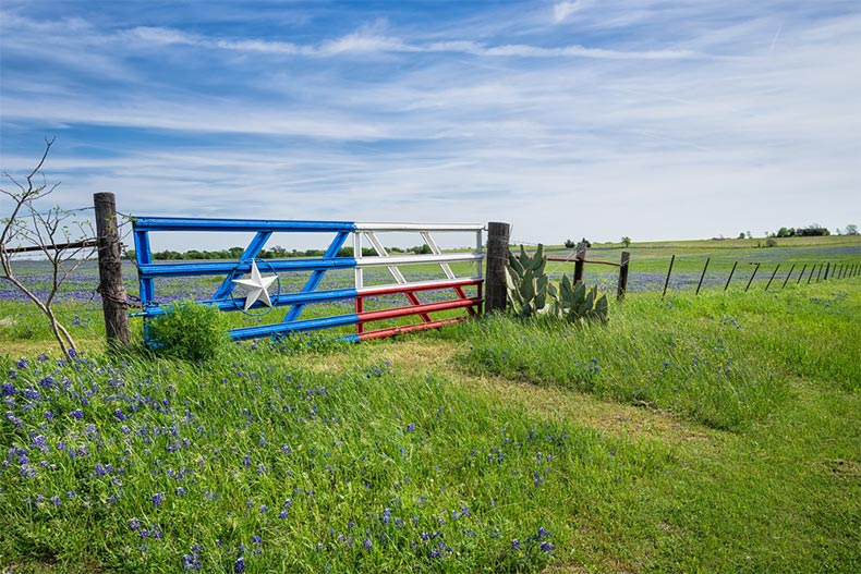 Texas flag gate with green grass and a blue sky