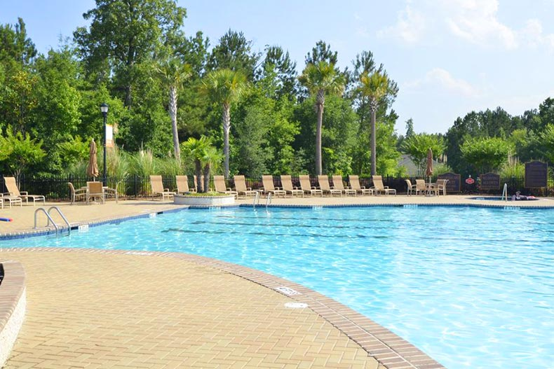 Trees surrounding the outdoor pool at The Haven in Bluffton, South Carolina