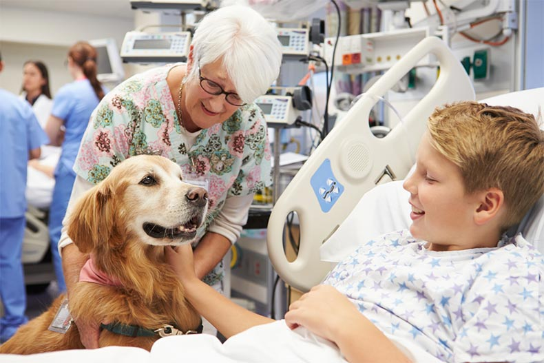 A senior woman bringing a therapy dog to visit a sick boy in a hospital