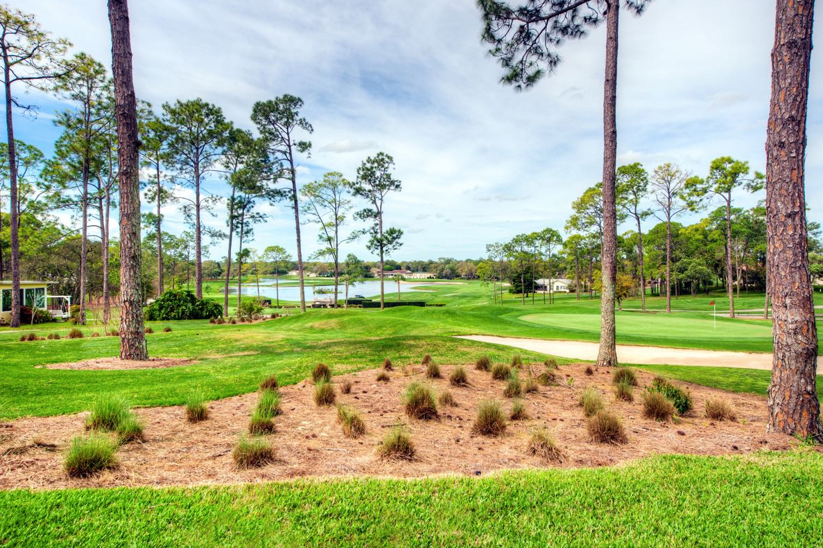 Timber Pines in Spring Hill, FL is a beautiful 55+ community that offers plenty of amenities and an active lifestyle.