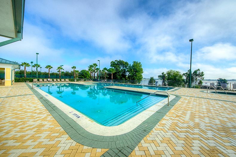 Palm trees surrounding the outdoor pool at Traditions at Lake Ruby in Winter Haven, Florida