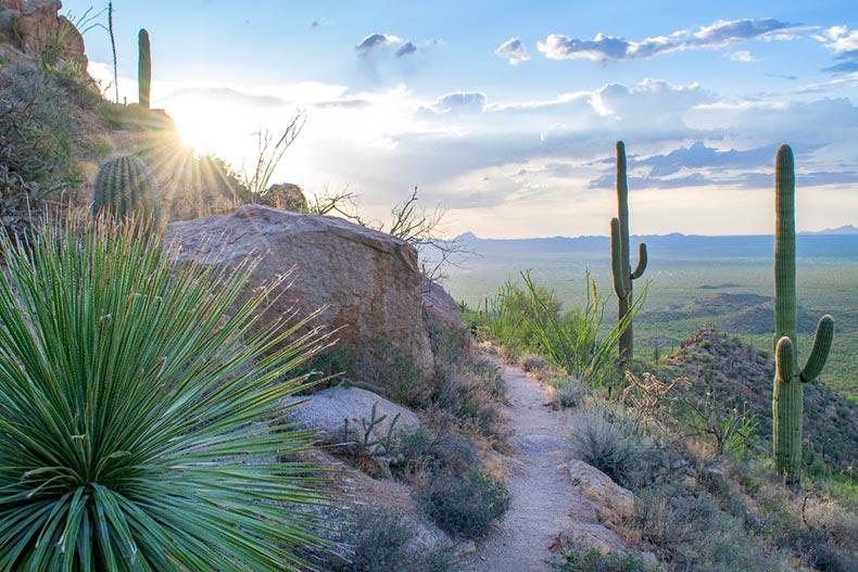 A trail on a rocky hillside in Saguaro National Park near Tucson, Arizona
