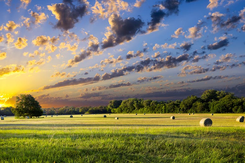 View of a tranquil Texas meadow at sunrise with hay bales strewn across the field