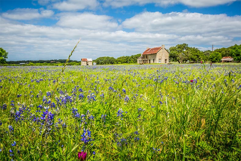 A mid-19th century, two-story house in a field of bluebonnets in Marble Falls, Texas