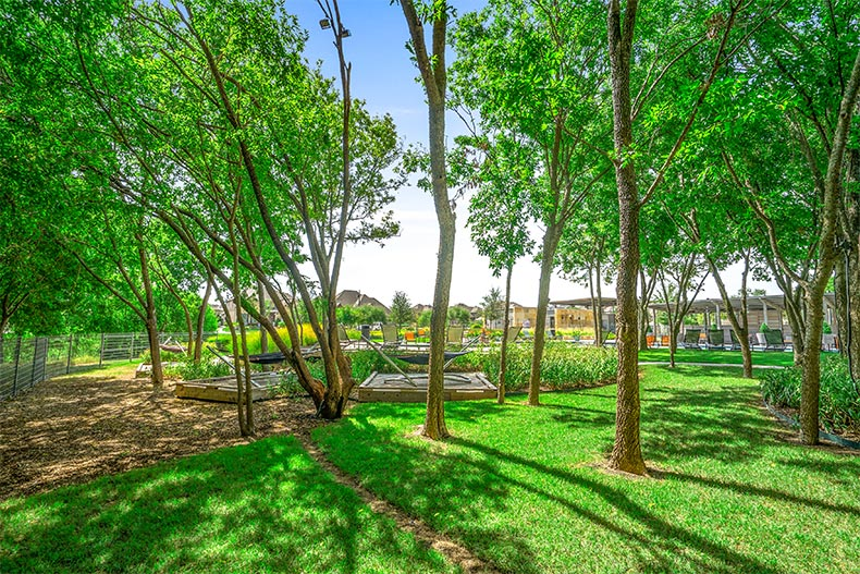 The picturesque greenery on the grounds of Del Webb at Union Park in Little Elm, Texas