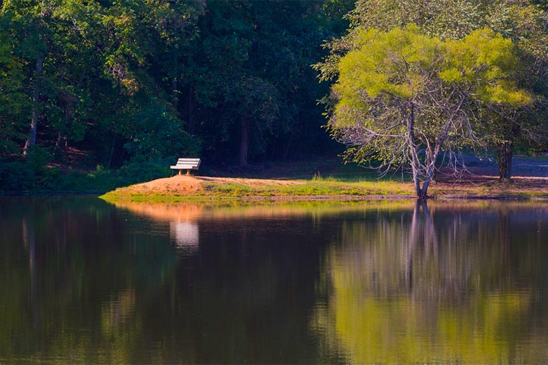 A bench sitting beside a calm lake in the northwestern part of South Carolina