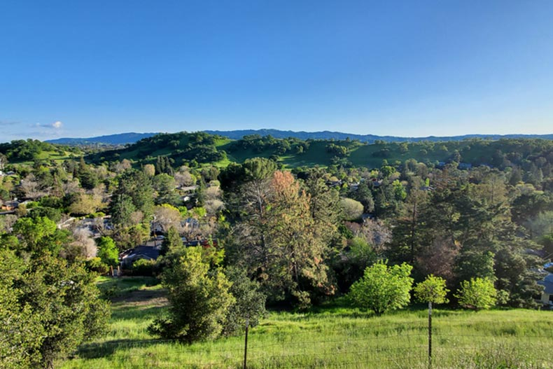 View of rolling hills with grass and trees in Walnut Creek, California