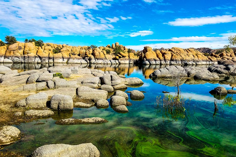 Algae bloom at Watson Lake in the Granite Dells of Prescott, Arizona.