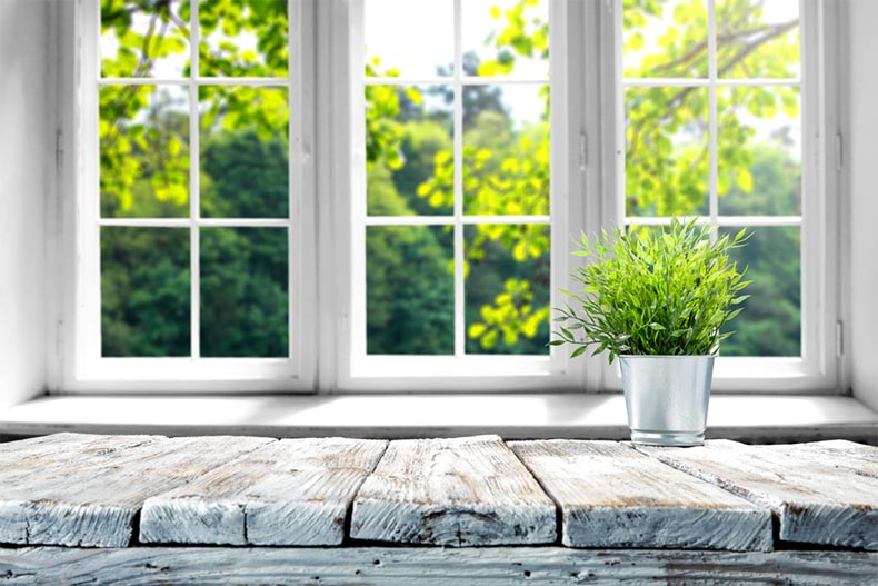 A wooden table with a green plant beside a set of windows