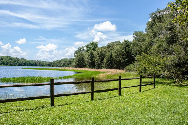 A fence along the edge of a picturesque pond in Withlacoochee Forest in Hernando County, Florida